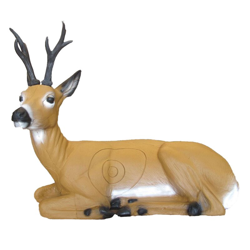 SRT Sitting Roebuck