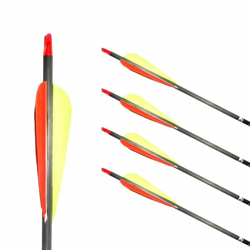Complete Arrow | GOLDTIP Ultralight Pro - Carbon