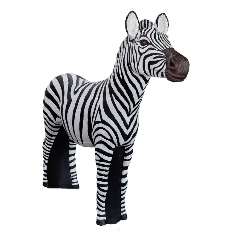 ASEN SPORTS Zebra [Spedition]