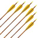 Complete arrow | SKYLON Bentwood - Carbon - factory fletched - Pack of 6