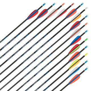 Complete arrow | SKYLON Radius - Carbon - factory...