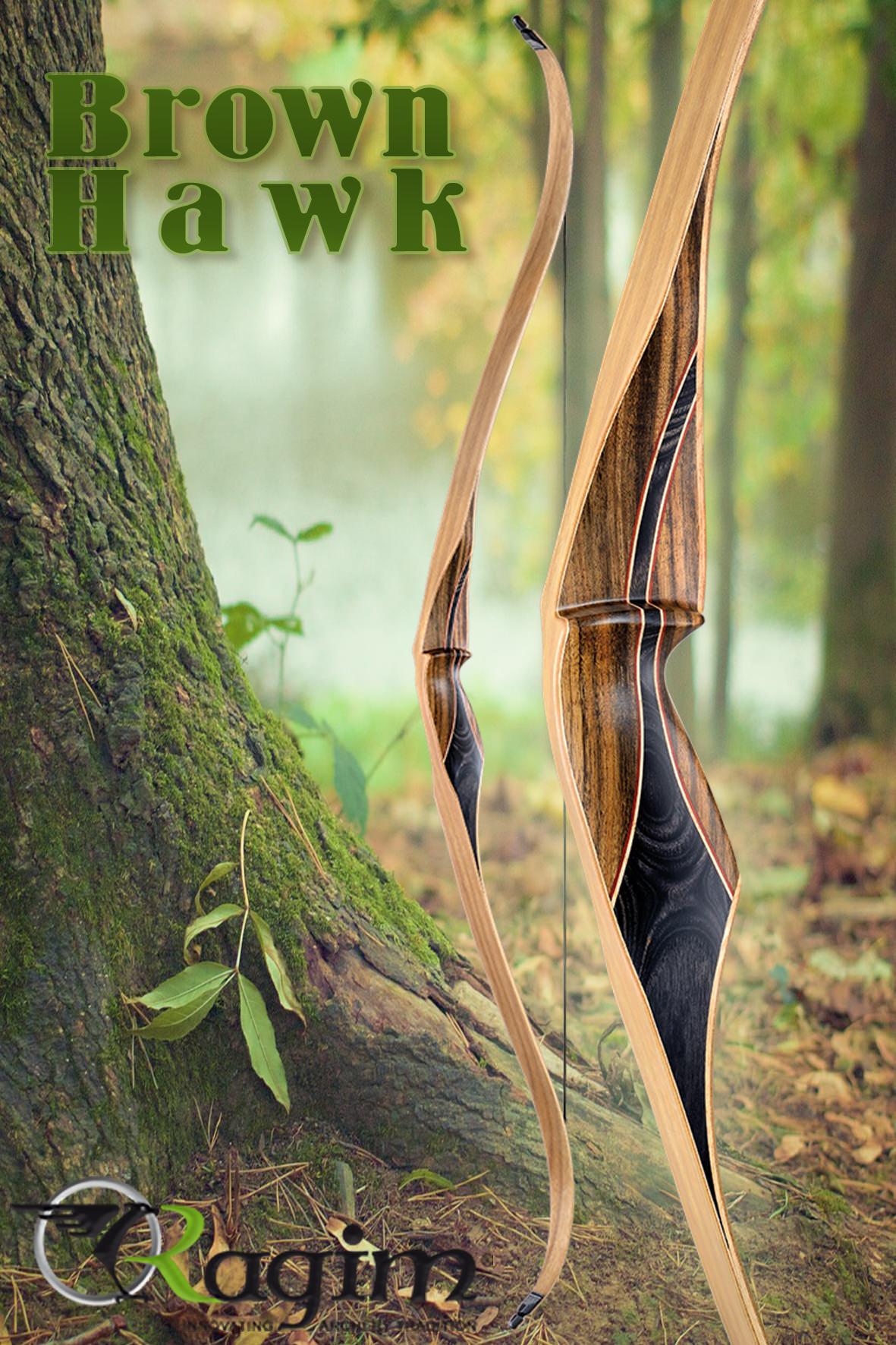 Brown Hawk 2016