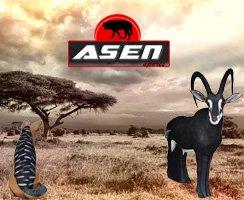 Arsen Sports jetzt bei uns