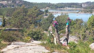 Hübsch dekorierter Baum bei den Swedish Open in Lilla Brattön
