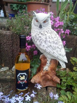 Schöner Preis für Justus 1. Platz in Krefeld: Schneeeule und Wein