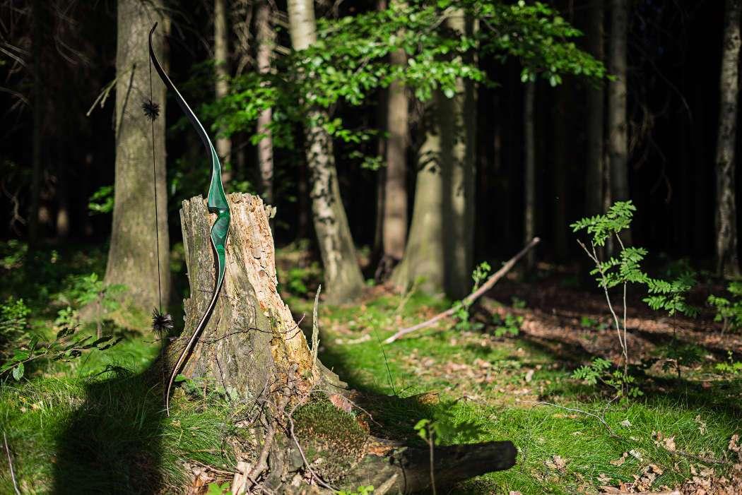 Der Malachite von Jackalope Archery erfreut gerade Einsteiger mit toller Optik und bester Preis-Leistung