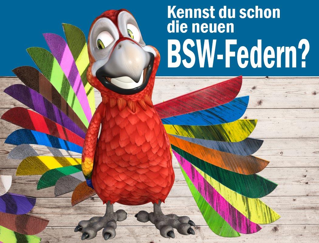 Die Bogensport Federn von BSW bringen ordentlich Farbe an deinen Pfeil