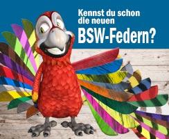 Die neuen Bogensport Federn von BSW bringen Farbe in den Pfeilflug