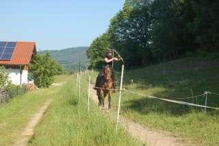 Johanna startete das letzte Mal mit ihrem Pferd Hanne