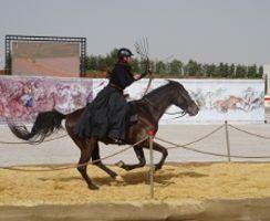 Johanna Pfister zeigte vor den Augen des jordanischen Königs ihr Können