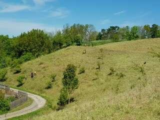 Tolle Landschaft: der Unstrut-Hainich-Gran-Prix