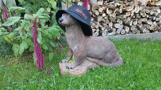 Dieser hübsche Otter fand seinen Weg auf Annika's heimischen Parcours
